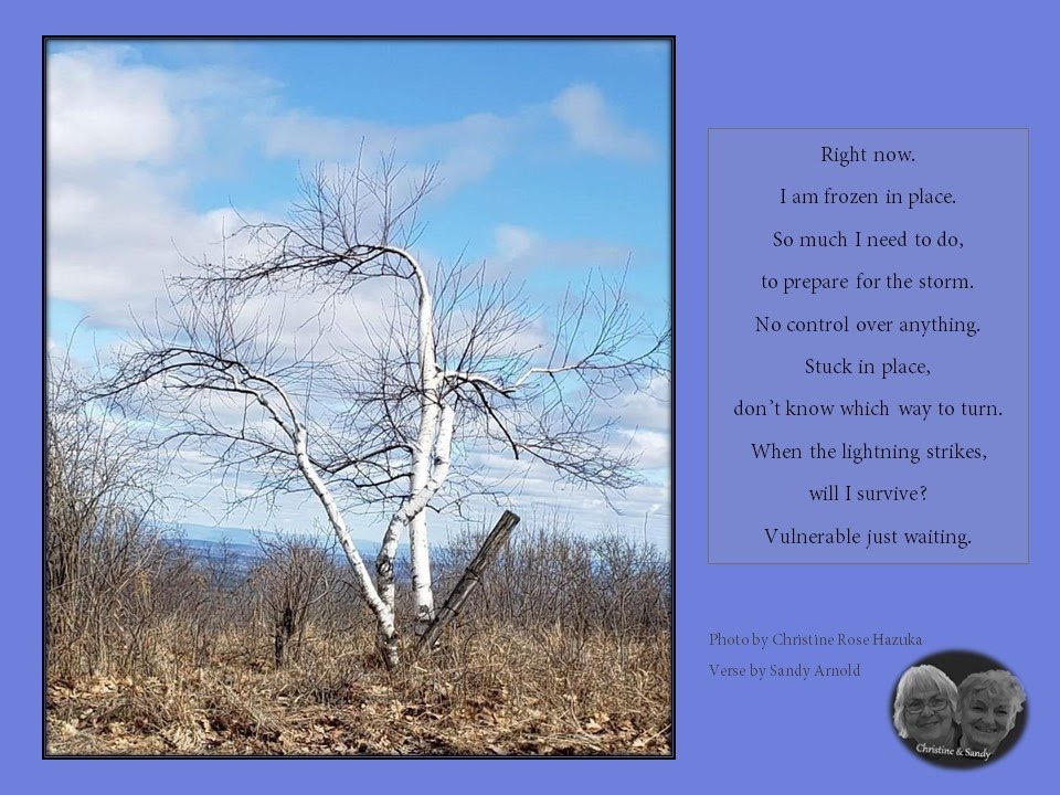 Photo by Christine Rose Hazuka, Verse by Sandy Arnold